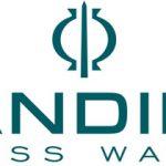 تاریخچه برند کاندینو